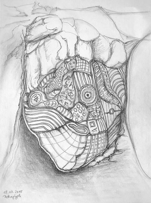 Zeichnung einer Pethroglyphe